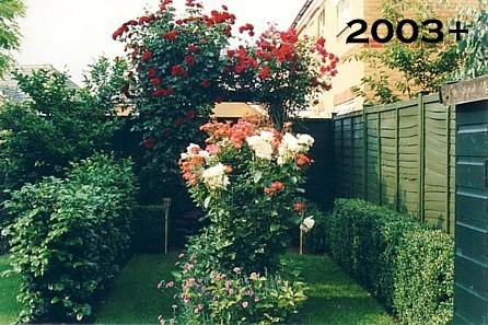My Garden 2003+