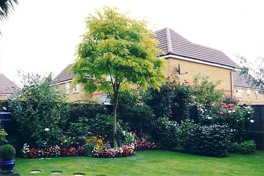 Autumn 2003