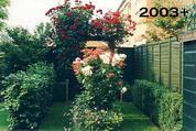 My Garden 2003-2005