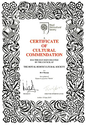 Certificate of Cultural Commendation Stuart Meeson (2015)
