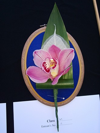 Buttonhole of cymbidium orchid + aspidistra (First Prize)