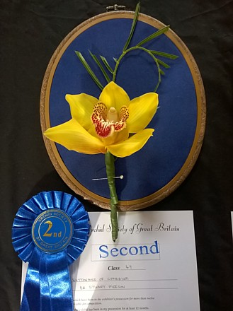 Second for buttonhole